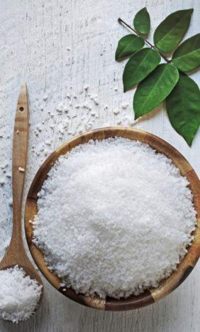 Home - Himalayan Salt Store